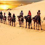 marrakech desert tours,things to do in morocco, marrakech tours, morocco desert tours, where to go in morocco, top things to do in morocco, best things to do in morocco,morocco desert trip